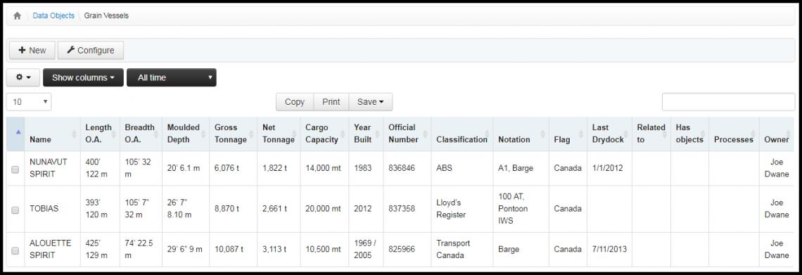 Screenshot: database of cargo vessels